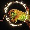 Цирки в Абинске